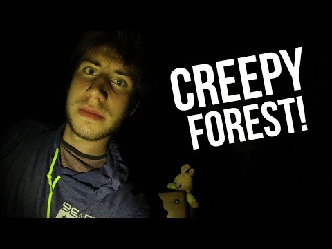 EXPLORING A HUGE CREEPY FOREST!