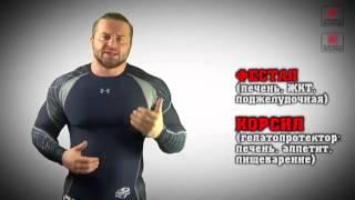 видео Диабетон МВ в бодибилдинге: дозировки, польза и вред спортсменам