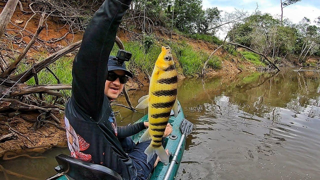 COMO PESCAR PIAU NA VARINHA DE MÃO e fazer ceva na hora! Pescaria.