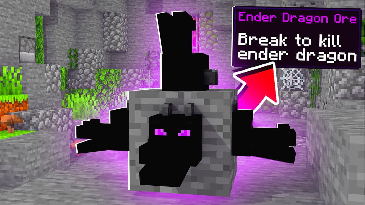 Minecraft But Ender Dragon Is Ore