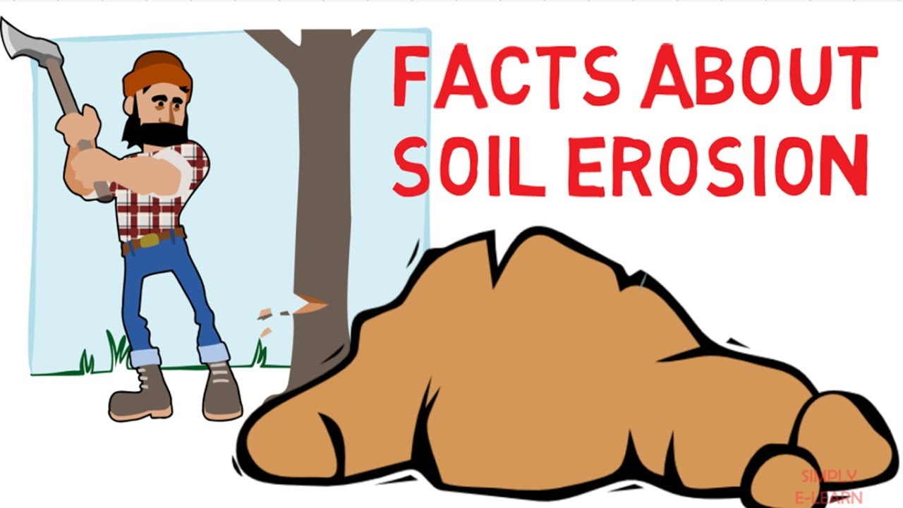 Soil erosion facts how to prevent soil erosion simply for Soil information for kids