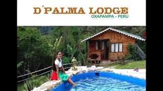 Hoteles Oxapampa - D`Palma Lodge