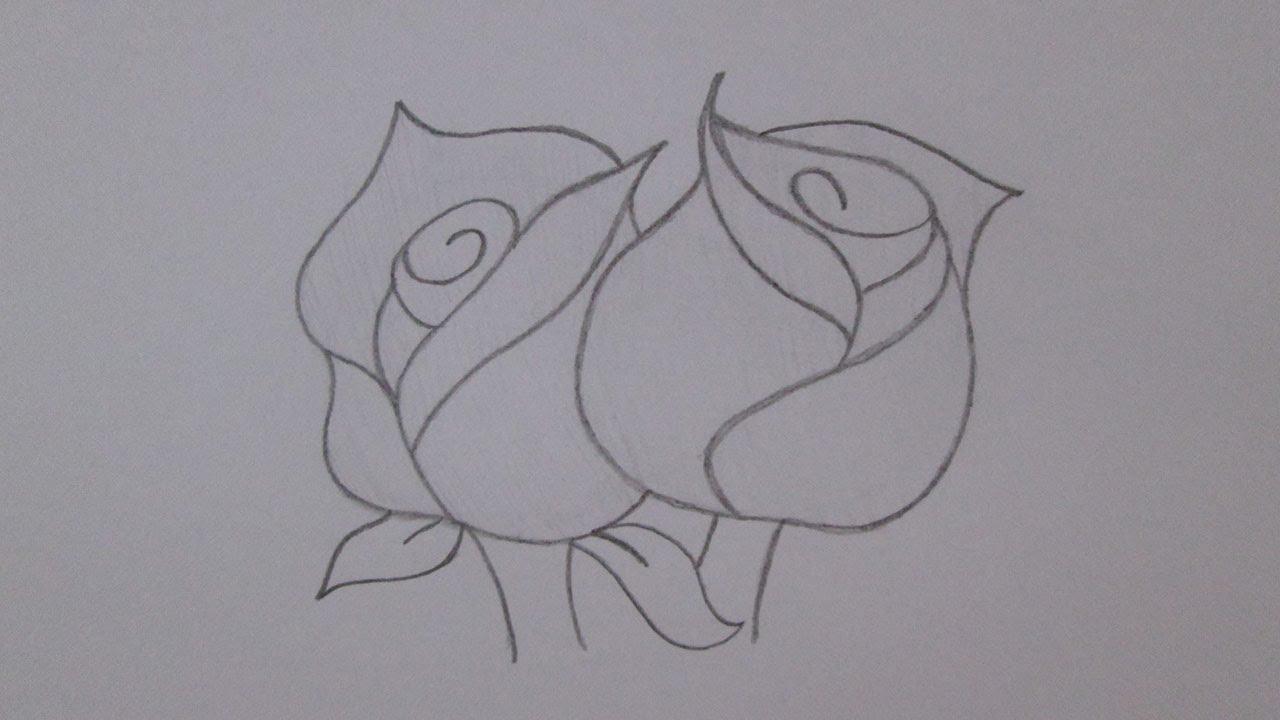 Cómo Dibujar Rosas Youtube