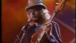 Lynyrd Skynyrd- Sweet Home Alabama 1987
