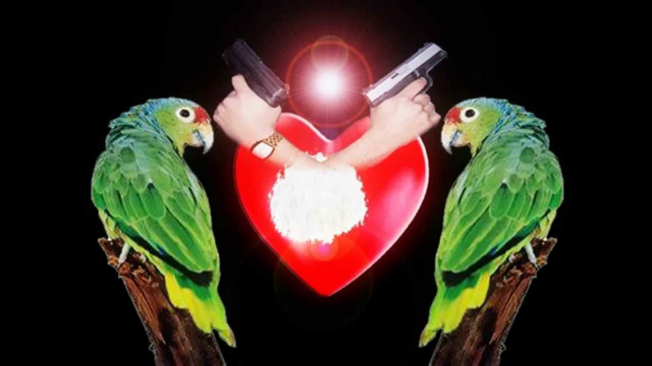 disco corazon de perico los razos