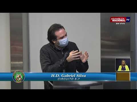 Download Gabriel Silva | Principios y Lineamientos para una Política Criminal