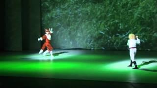 Mały Książę - Little Prince - Teatr Muzyczny w Gdyni.avi