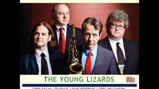 Young Lizards.wmv