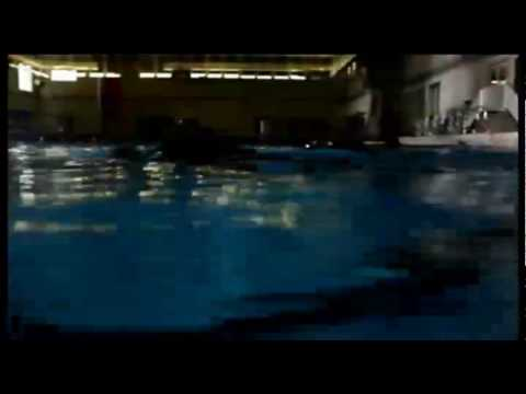 The World of Aviation Rescue Swimming