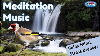 A Peaceful Meditation Healing Positive Energy Field Music Nature Water Sounds Birds Singing