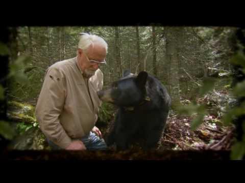 Bearwalker of the Northwoods (Intro Demo)
