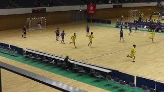 《ハンドボール》2019年1月15日 きたえーる 北海道高等学校新人戦 北海道予選会 後半