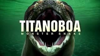 Титанобоа Самая Гиганская Змея В Мире