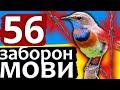 Як вижила українська мова!