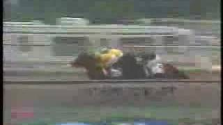 1988 Preakness Stakes