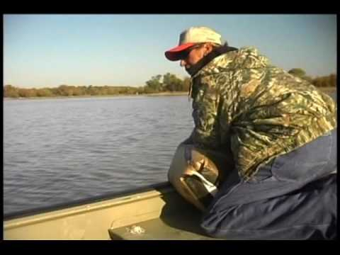 Catfishing Tips With Danny King Part 1