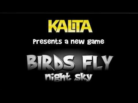 Birds Fly: Night Sky