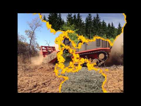 Prinoth/AHWI Mulching Forestry Products By Rowmec Equipment