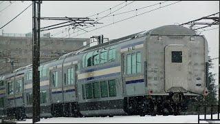 E235系グリーン車甲種輸送9473レ DE101539牽引 信越本線下り