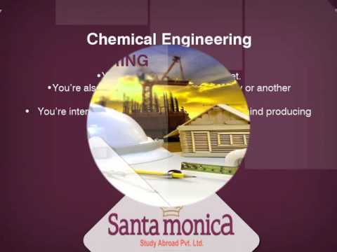 Santa Monica Cochin -  Types of Engineering You Should Study