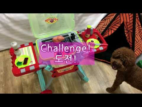 Learn words Camping with dog 캠핑 요리 cooking kids video learn english kids funny video_딘이누나♥#167