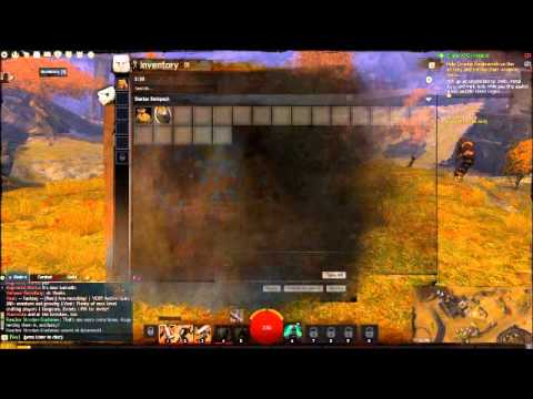 How To Play Guild Wars 2 Presented By Stephan Bender