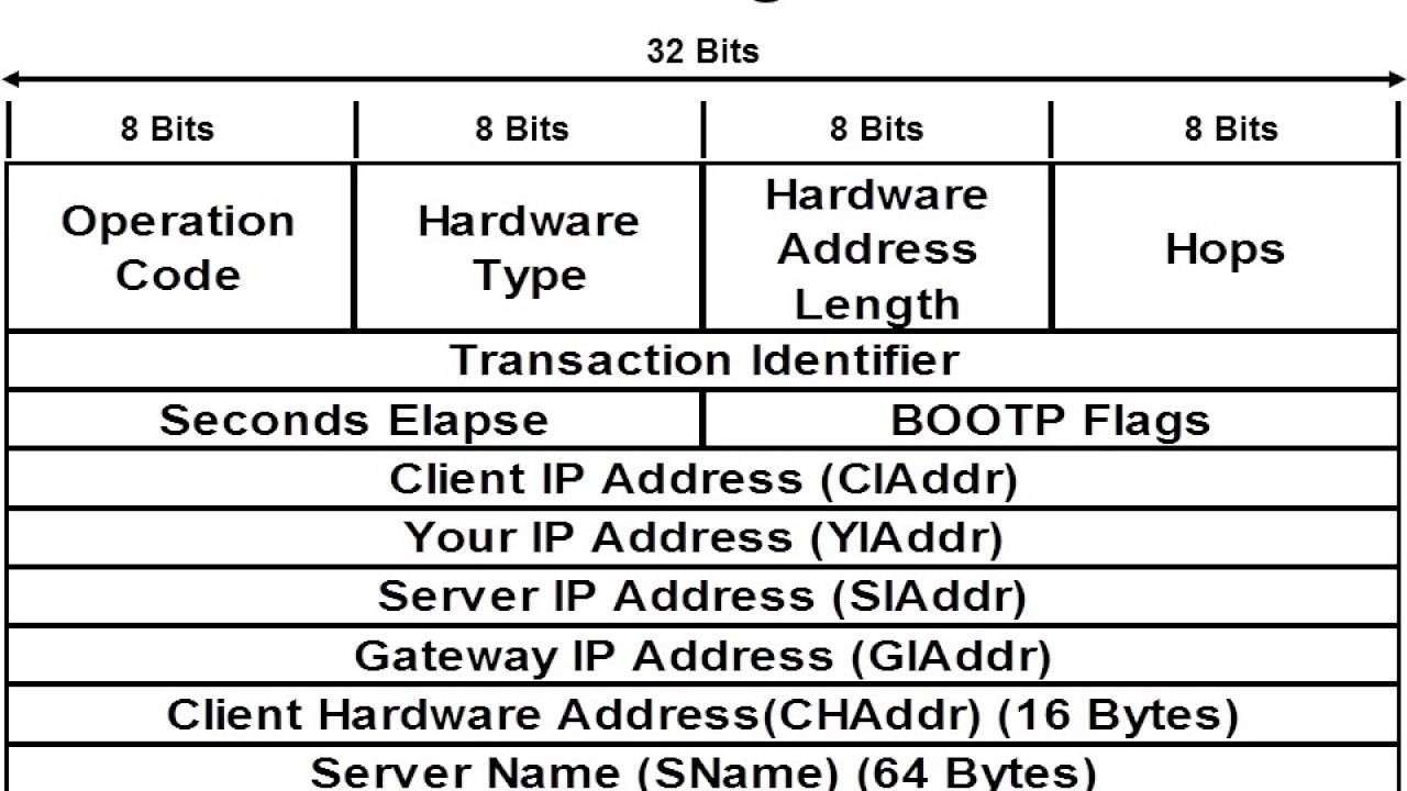 Wireshark Certified Network Analyst Wcna Youtube