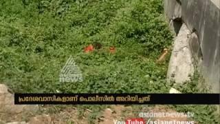 Women found dead near Oottupara Walayar road side | FIR 27 Mar 2017