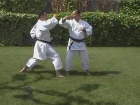 DVD COMPLETO ejercicios fundamentales karate Gym Louis