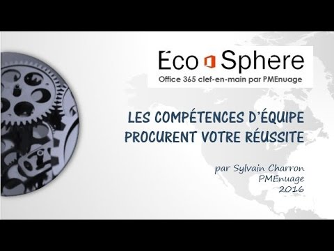 irritants environnementaux écosphère et office 365 pour pme en français en un temps record