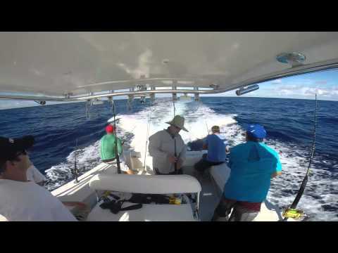 Trolling for Tuna & Wahoo - Offshore Sarasota, FL - Aug 2014