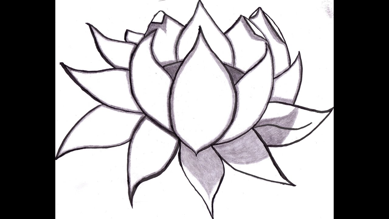 Copy of no 3 drawing of a lotus flower youtube 3 drawing of a lotus flower mightylinksfo