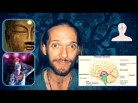 Secrets of the PINEAL GLAND/THIRD EYE... the gateway to God.