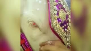 Bakra Eid Tezabi Totay Funny Videos