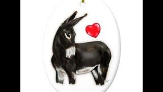 Animal Porn :  Donkey Love?