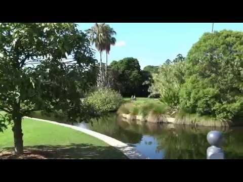 Sydney Royal Botanical Garden Domain