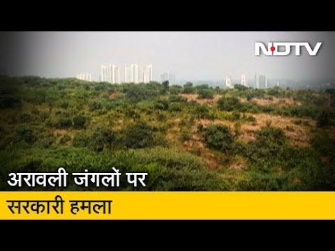 Haryana में 60 हजार एकड़ वन भूमि नीलाम