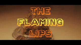The Flaming Lips - You n me Sellin' Weed (subtítulos español)