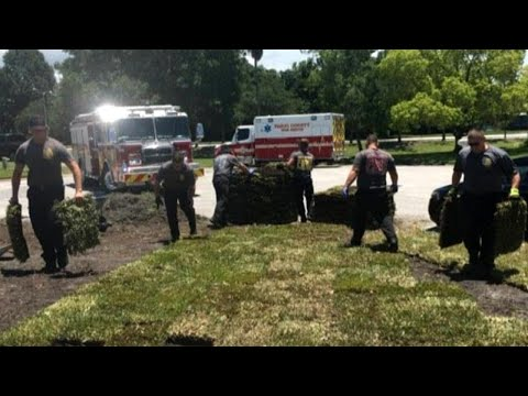 Firefighters Finish Laying Sod for Florida Man Who Suffered Heart Attack
