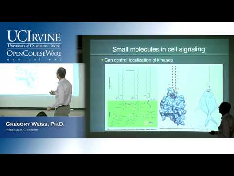 Introduction to Chemical Biology 128. Lecture 18. Terpenes and Cell Signaling, Part 2