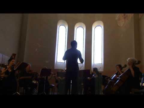 Государственный камерный оркестр Республики Абхазия - Гендель. Музыка на воде.