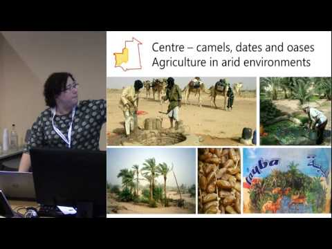 Intangible cultural heritage in Mauritania: sedentarisation, adaptation and ongoing reinvention