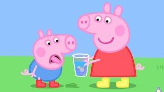 Peppa Wutz 💐 Peppas Perfüm | Peppa Pig Deutsch Neue Folgen | Cartoons für Kinder
