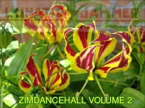 ZIMDANCEHALL VOLUME 2