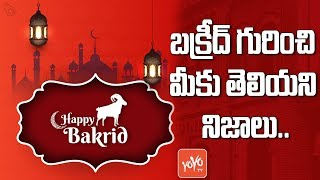 Bakrid History in Telugu | Bakrid Video | Eid al-Adha | #Bakrid | Happy Eid-ul-Adha 2019 | YOYO TV
