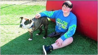 this-12-year-old-lost-his-leg-to-cancer-but-then-he-found-a-companion-who-understands-his-struggles