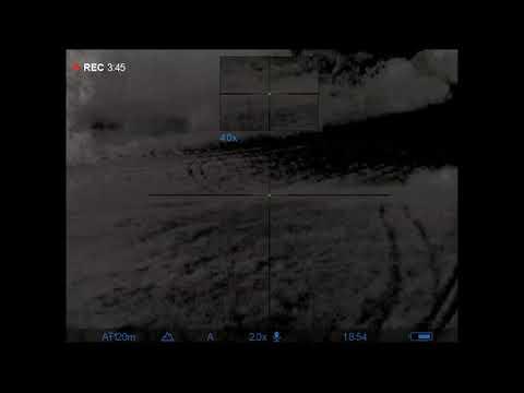 Pulsar Trail 2 LRF XP50 hog hunting