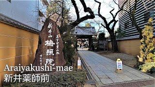 新井薬師前駅から梅照院まで歩く|From Araiyakushi-mae to Baisyoin temple in Tokyo [GoProHero8 Jan.2020]