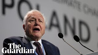 'Continuation of civilisation is in your hands,' Attenborough tells world leaders