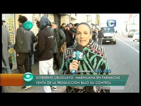 Marihuana oficial en Uruguay, día 1